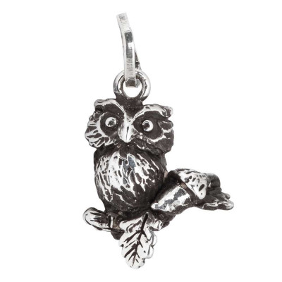 Charm with owl