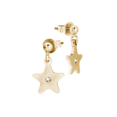 Rosé earrings with star and zircon