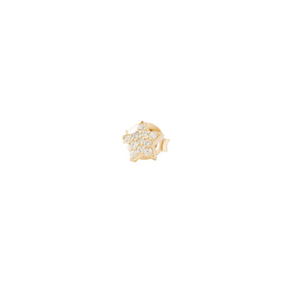 Yellow gold plated star earring in white zircons