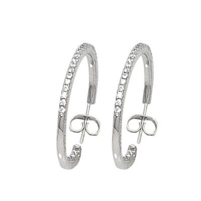 Circle earrings with zircons (diameter cm 3,5)